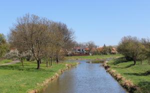 opolany_cidlina_river